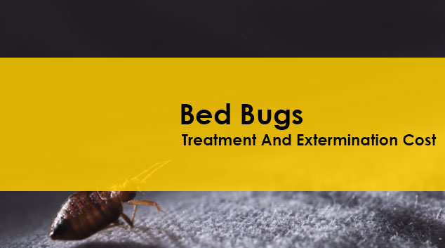 Bed bug Treatment And Extermination Cost